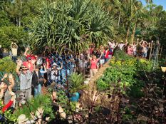 Bellis: the most visited Open Garden in Qld