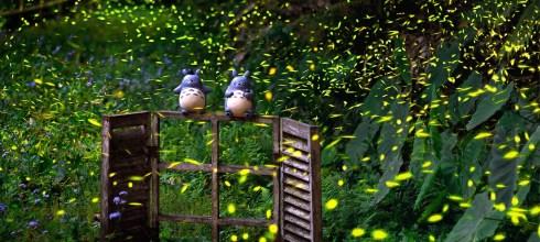 額滿!【傑瑞大叔攝影-童話風、自然風一區多得的岩川螢火蟲經典團】 平日班 2021/04/16 (五) 、假日班 2021/04/18(日) 、室內講座 2021/04/07(三)晚上