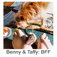Benny-And-Taffy-BFF
