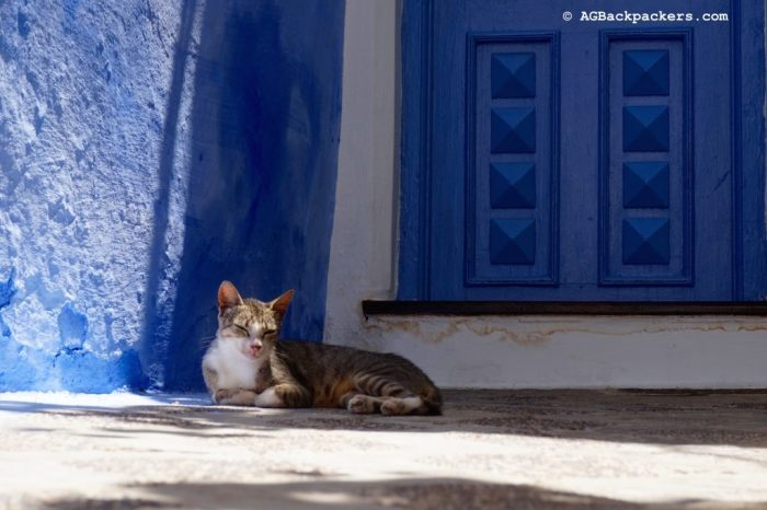 The Cat and the blue Door - Asilah