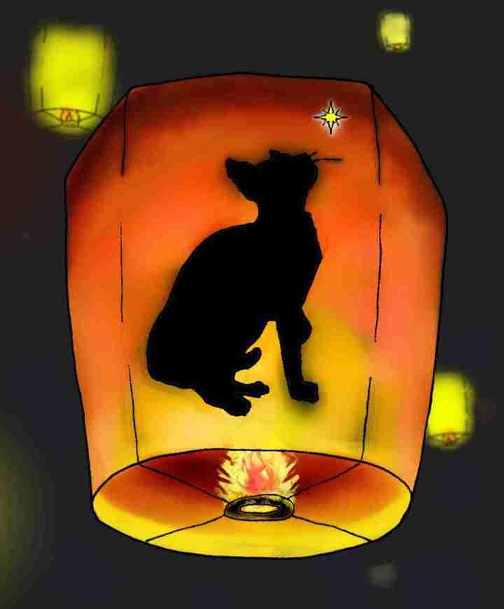 Dibujo. Silueta de un gato, Jerry, en la linterna de papel khom loi sobrevolando la noche.