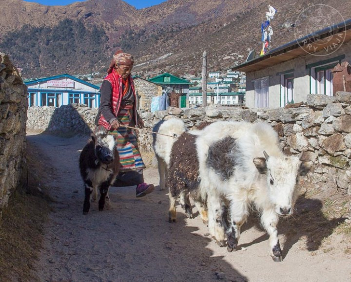 Khumjung, Campamento Base Everest, Nepal