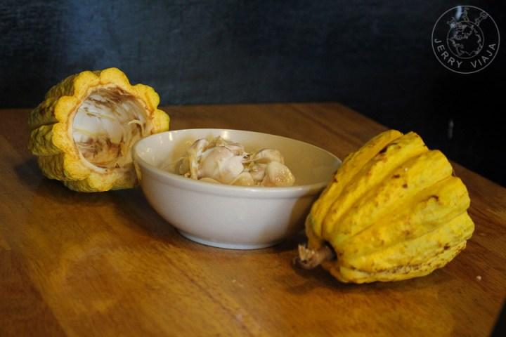 Fruto cacao, Malasia