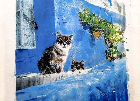 gatos en el islam, pintura de gatos en asilah, marruecos