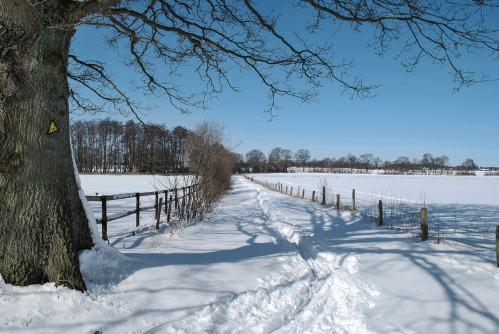 Winter 2010 (Quelle Wolfgang Haupt)