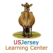 Jersey Learning Center Logo
