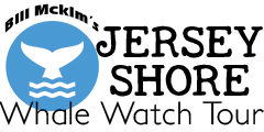 Jersey Shore Whale Watch Tour 2018