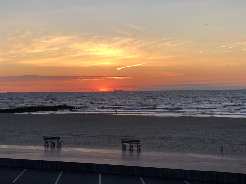 , Whale sightings off Belmar this week, Jersey Shore Whale Watch Tour 2020 Season