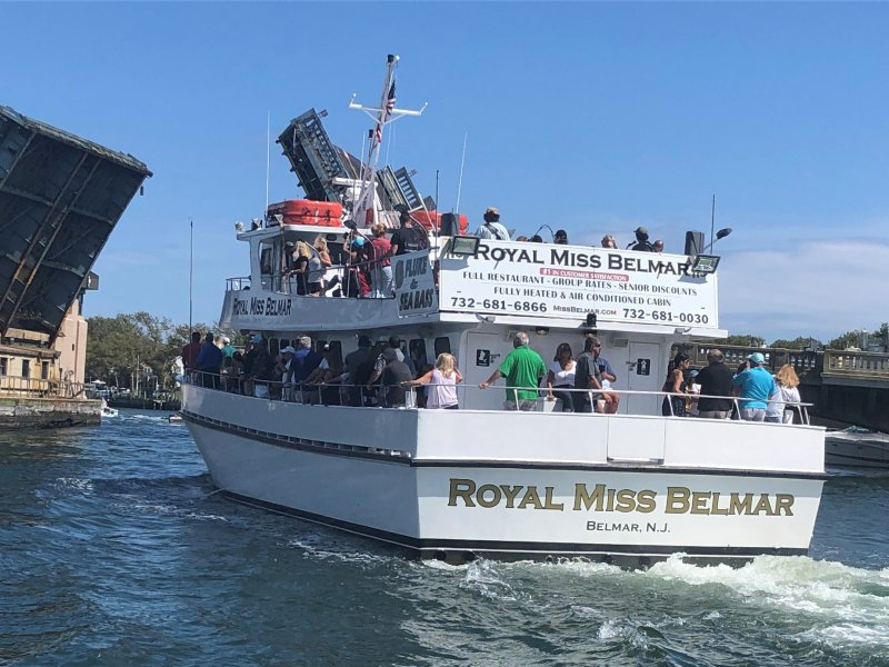, Meet our on board naturalist Danielle Brown, Jersey Shore Whale Watch Tour 2020 Season