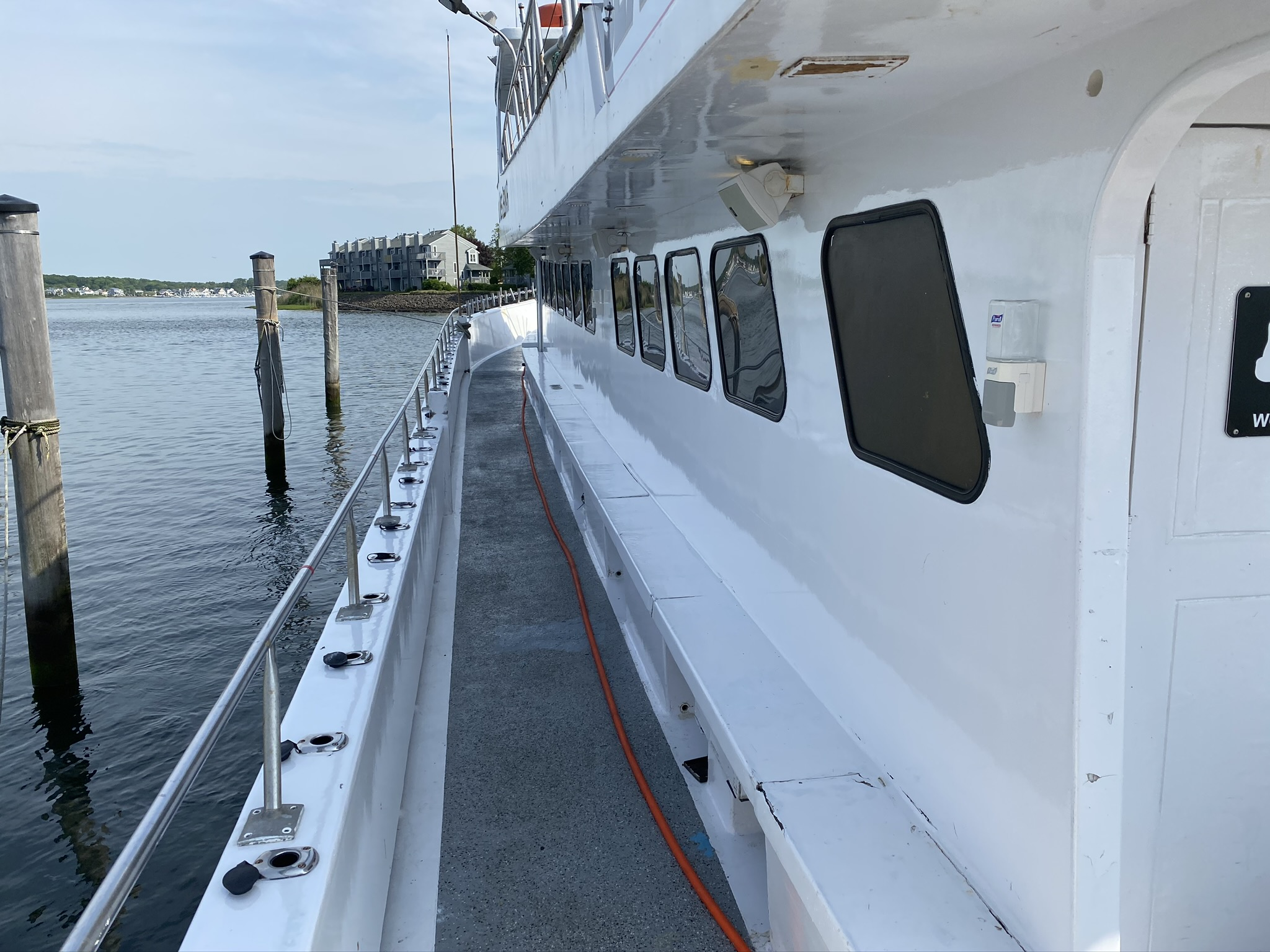 , whale watching COVID-19 Policies, Jersey Shore Whale Watch Tour 2020 Season