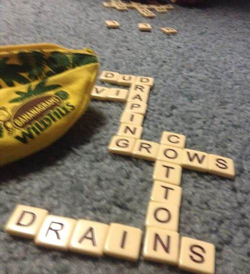 My English major skills crushed the girl in Bananagrams. (Wildcard? You mean quitter tile!)