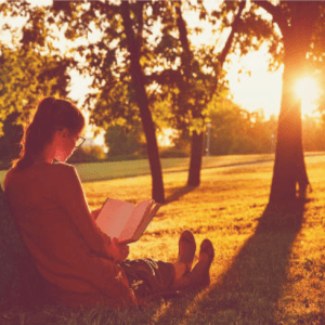 A person is sitting under a tree, reading a book. The glowing sun is low on the horizon, casting long, lazy shadows.