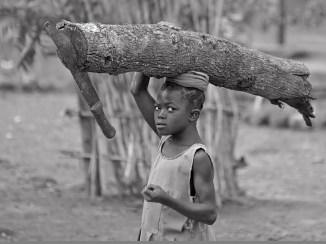 Adentia, GHANA, 2006