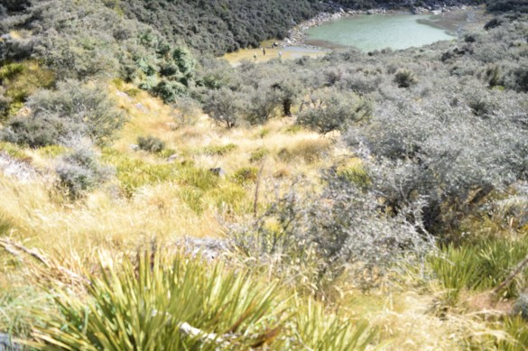 Blue Lakes hike, Mt. Cook