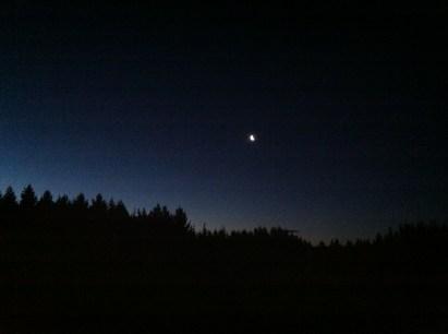 Night sky, Taieri Mouth