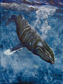 Valaan muotokuva (bulibulibum)