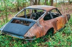 Porsche 911 in the woods