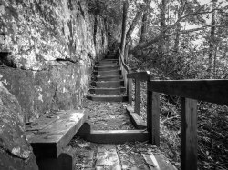 Stairs - High Shoals Fall Loop Trail - South Mountains State Park, NC