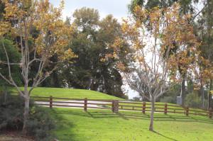 Rancho Santa Margarita homes