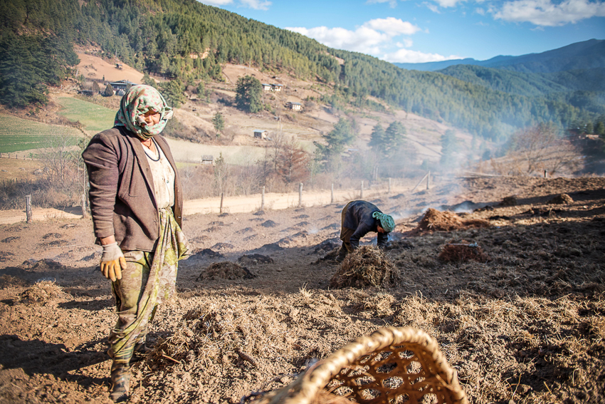 Bumthang Agriculture