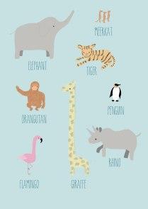 Zoo Things