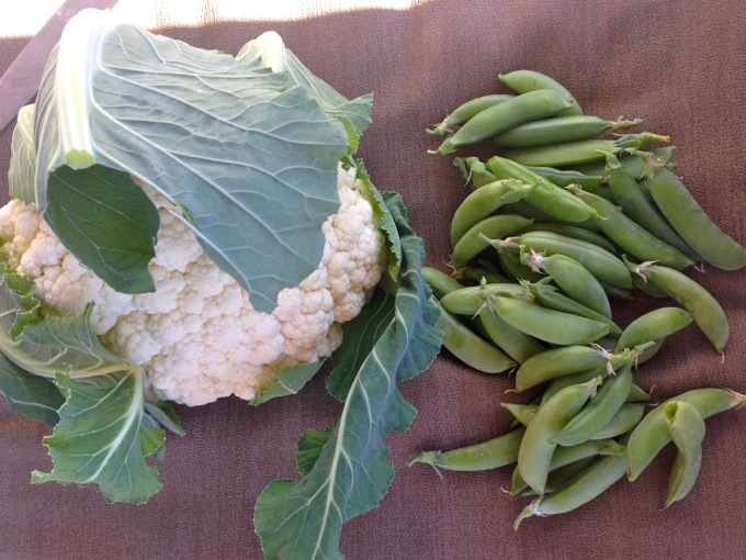 Cauliflower and sugar snap peas