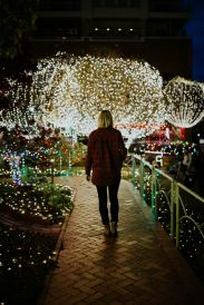 What I Learned About Heaven Through Christmas Lights