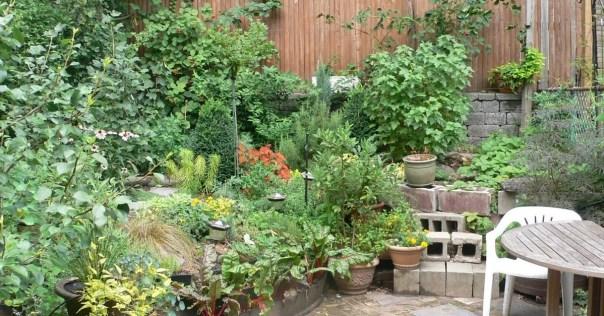 hell-yeah-gardening