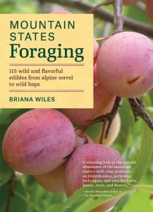 mt states foraging book