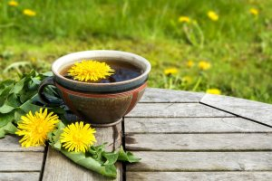 dandelion-tea-photo
