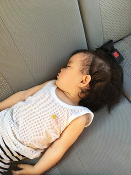 asleep-in-the-car