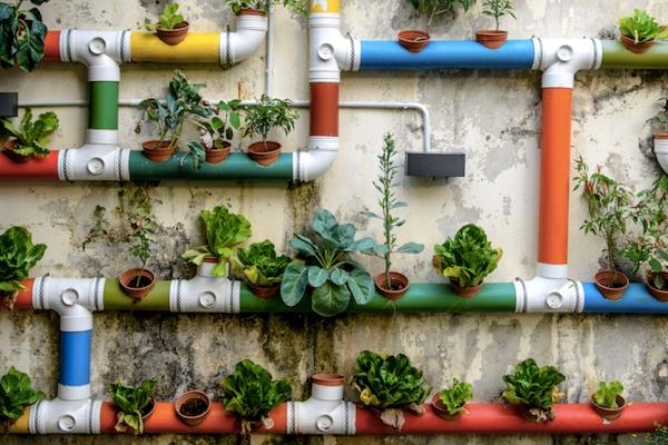 urban organic gardener