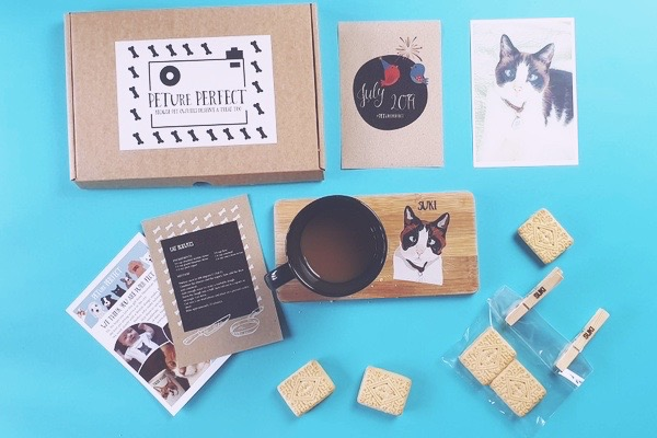 PETure Perfect subscription box for cats