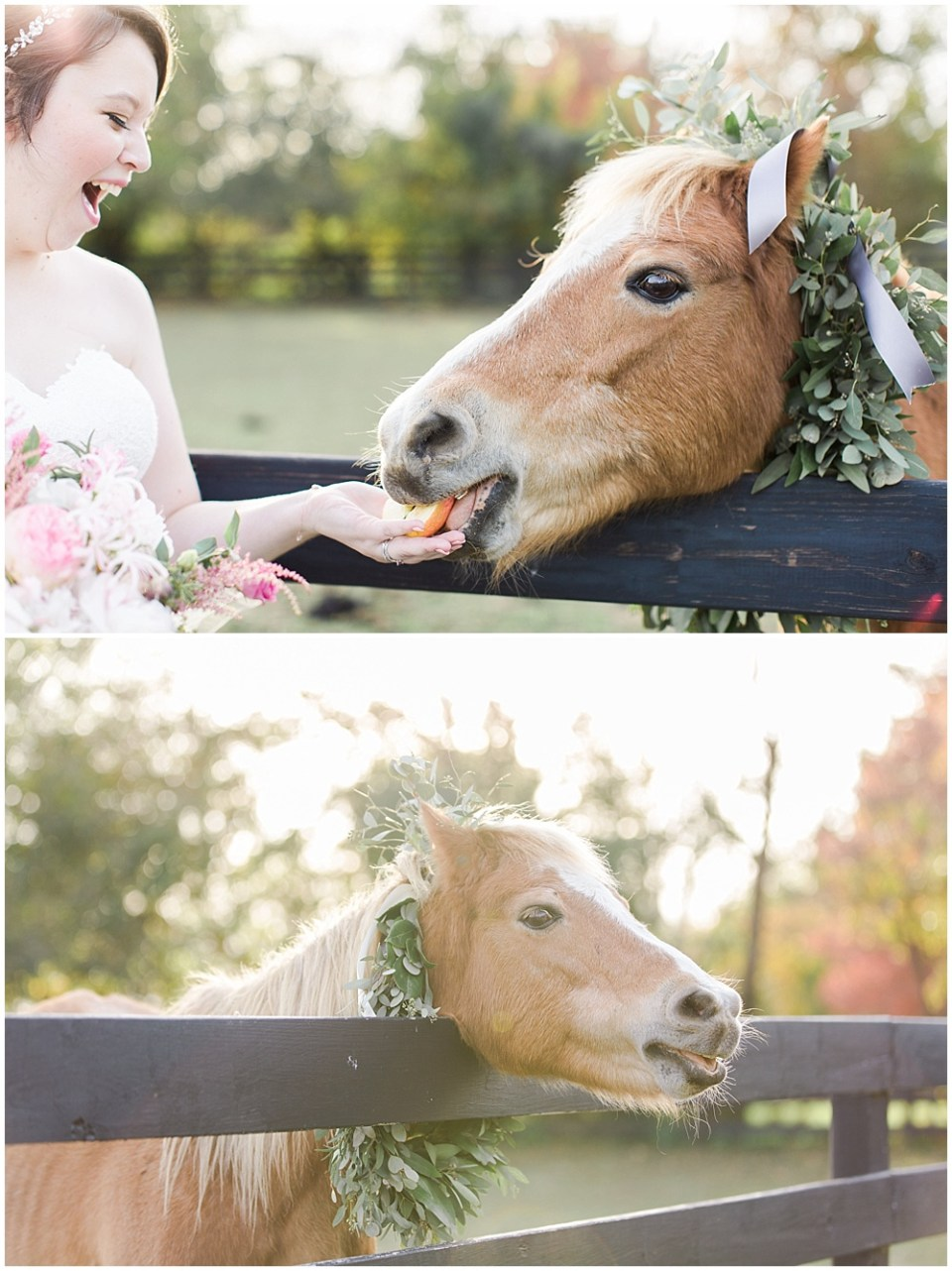 bride and horse, barn in zionsville wedding, ellie + tyler, ivan and louise images, jessica dum wedding coordination