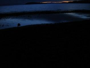 dreamtime darkling