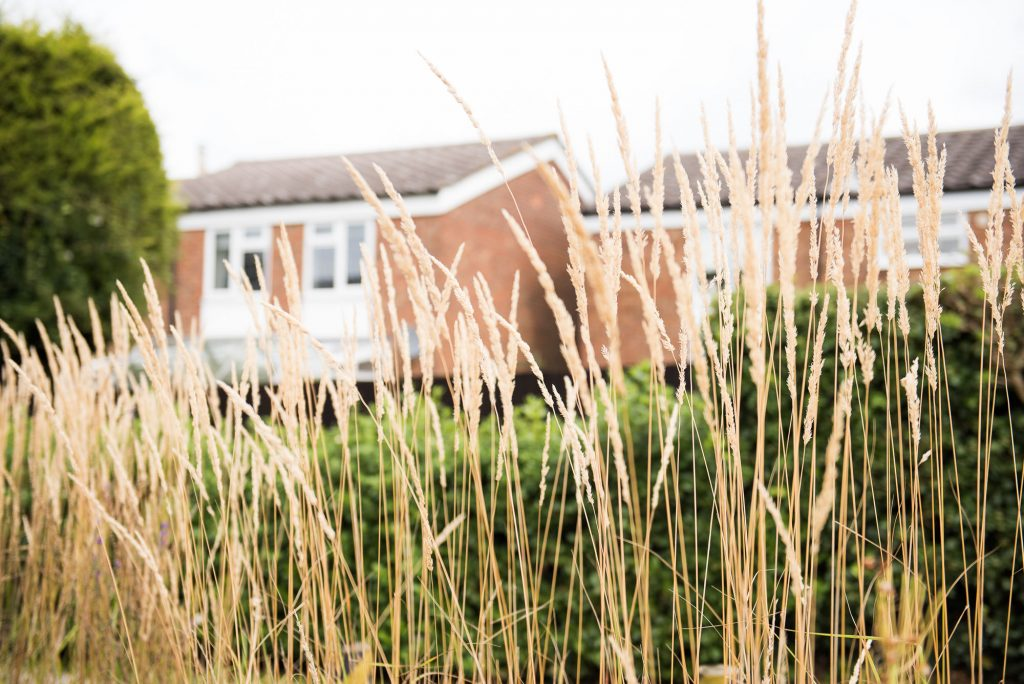 Naming Day Ceremony. Essex Family Photography. Natural Grasses at Highwood Village Hall, Chelmsford.
