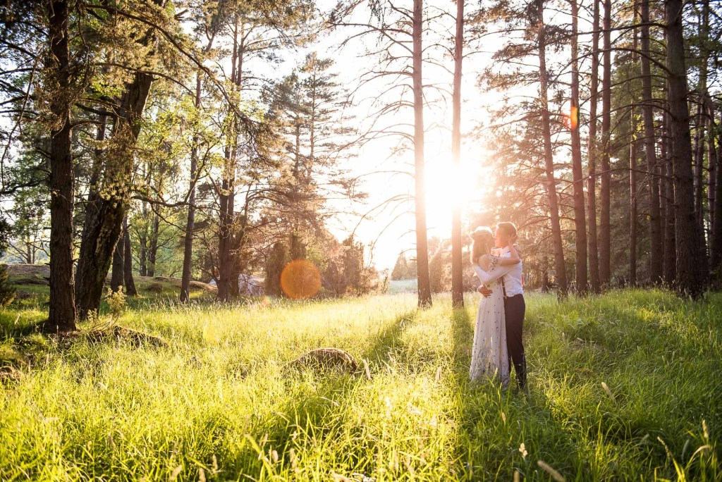 Wedding Photography Under £500, Wedding Portrait In Woodland Surrounded By Gorgeous Evening Golden Hour Light
