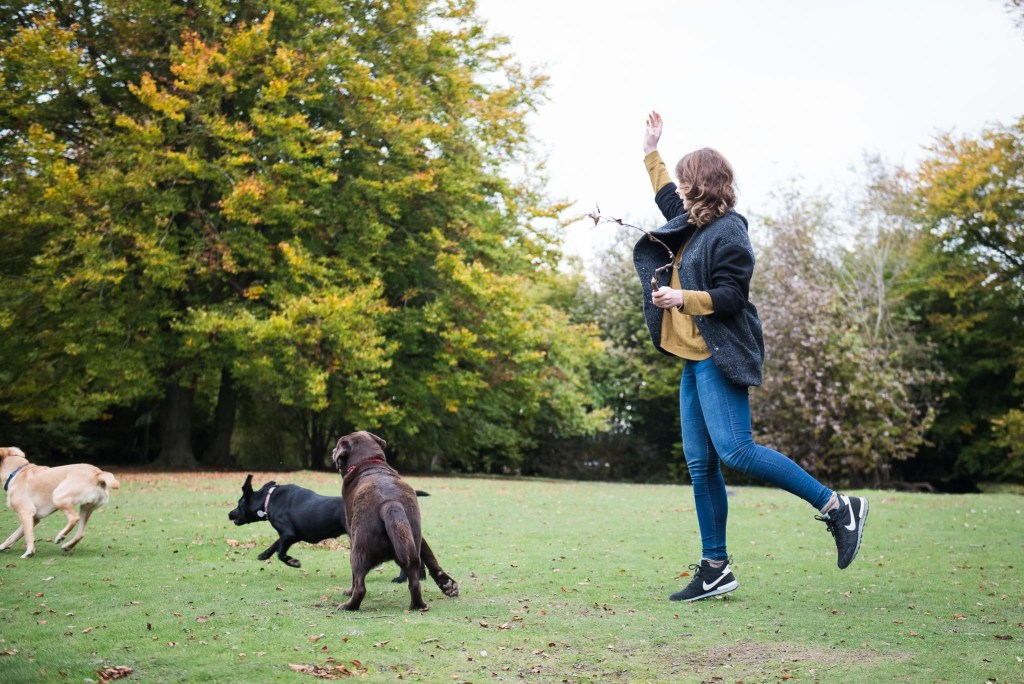 Surrey Family Photography, Lovely Family Walk Woman Throws A Stick For Her Dogs