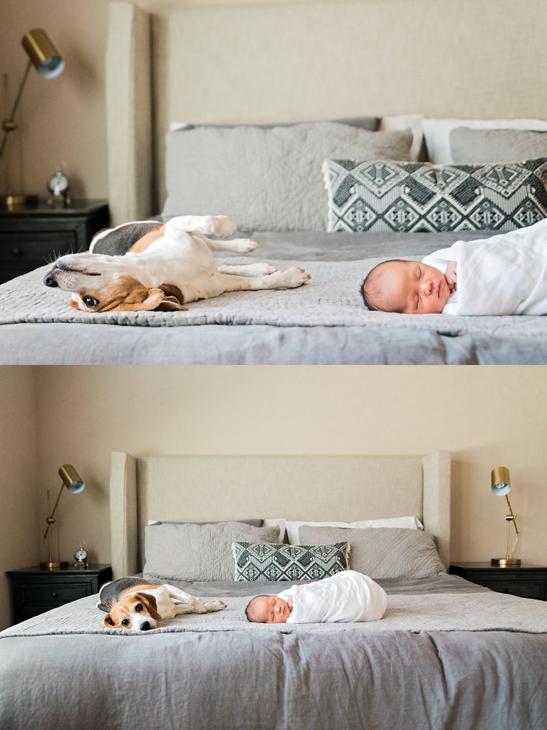 dallas tx newborn session