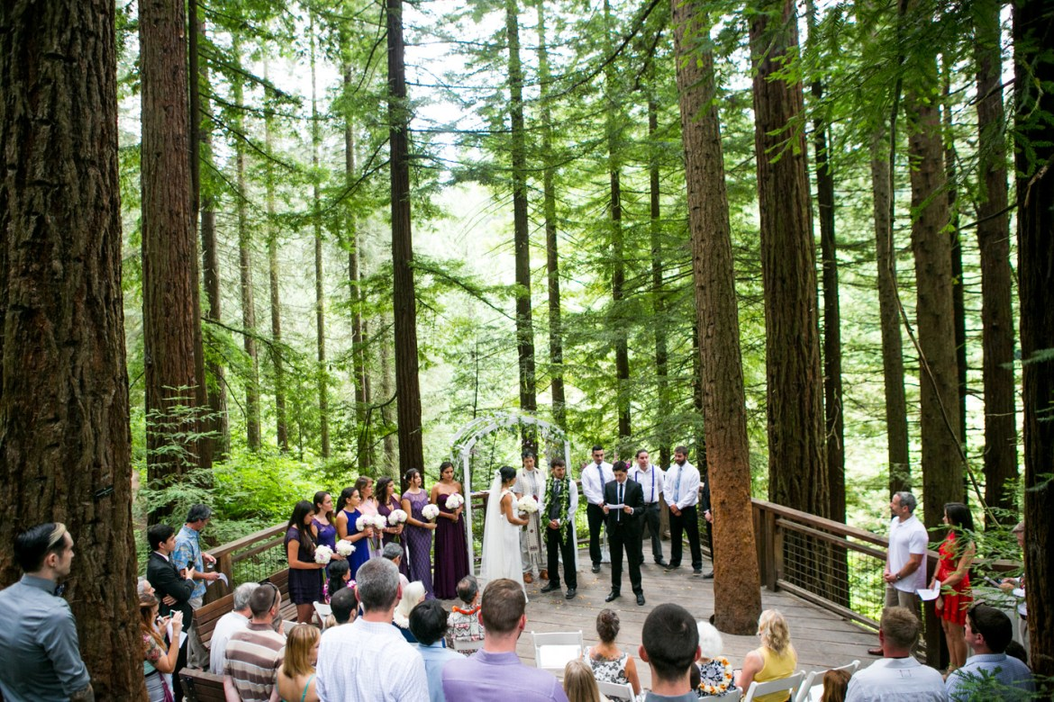 Ceci And Charlie A Redwood Deck And Meadow Wedding