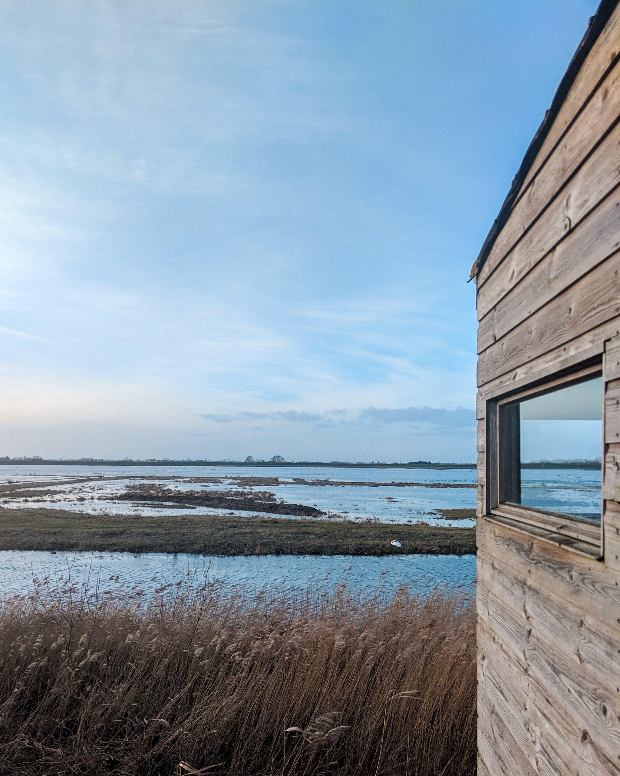 welney-wetland-centre