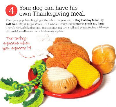 A Thanksgiving Care Package…From the Dog
