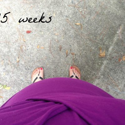15, 16, and 17 Weeks {Bumpdates}