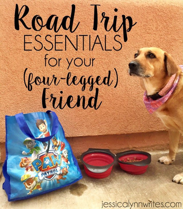Going on a road trip with a dog can be great for the whole family, but it involves a little planning, some patience, and these essentials for the trip!   jessicalynnwrites.com