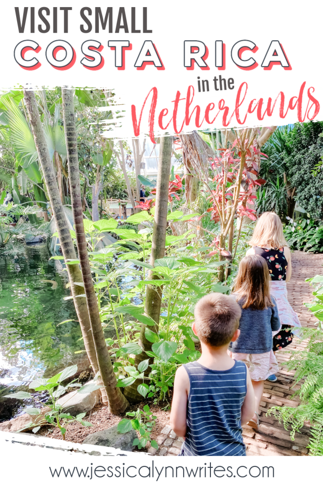 Skip the zoo and head to Small Costa Rica in the Netherlands—this little tropical wonder has dozens of animals and a butterfly garden.
