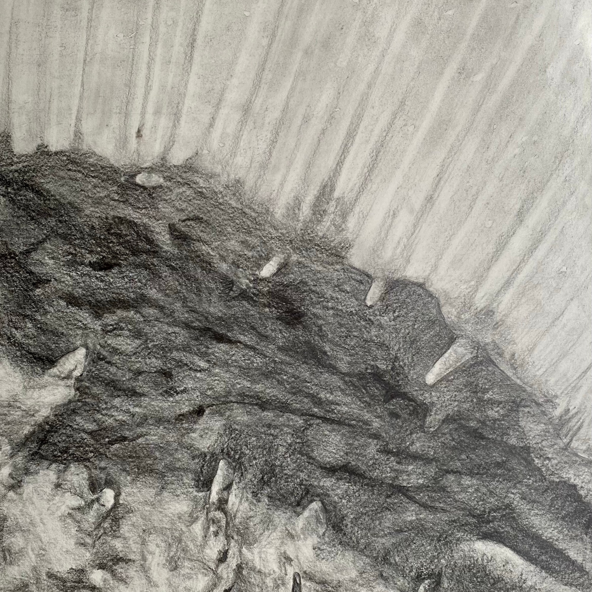 Removed - Graphite Drawing