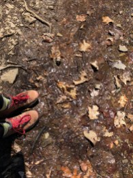 boots and water and leaves on the hiking trail in shenandoah