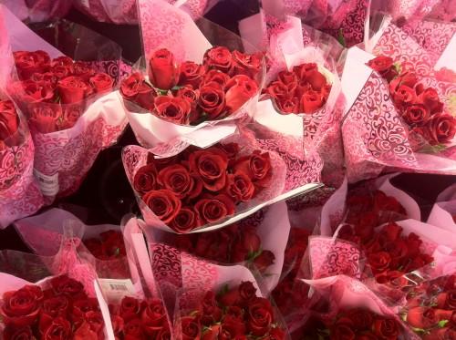 mmmm roses