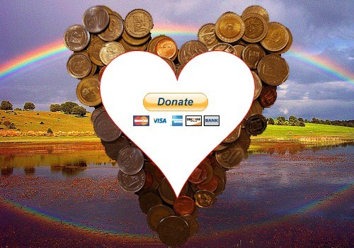 How to put a donate button on your Tumblr, blog, or website