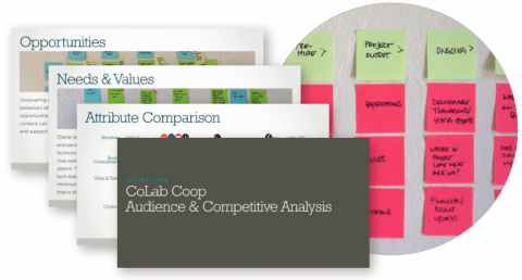 Selected pages from the audience analysis I conducted for Colab Co-op.